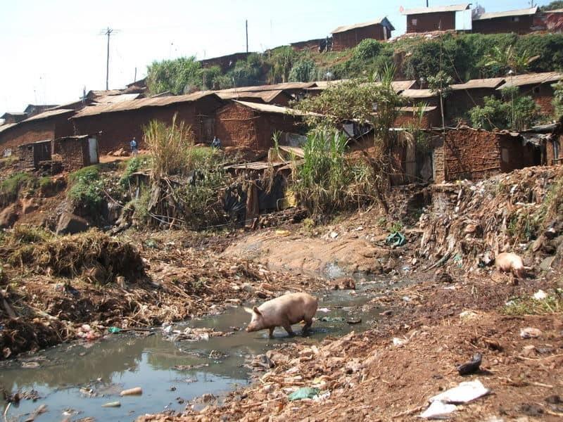 Flying toilet in Nairobi